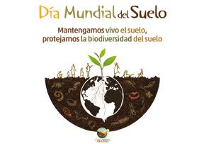 image for Día Mundial del Suelo