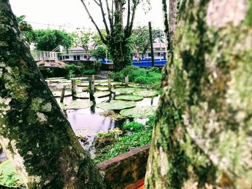Imagen Parque Santander