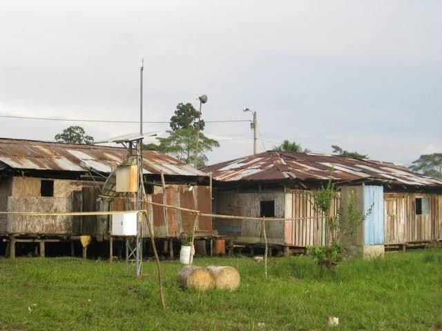 image for Distrito del Tigre teme contagio de coronavirus