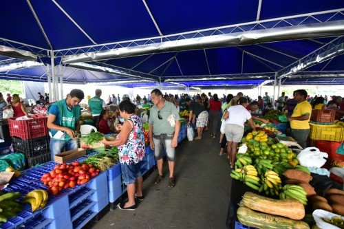 image for Tabatinga recebe I Feira da Agricultura Familiar
