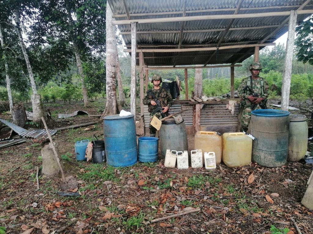 image for Destruyen 12 laboratorios para el procesamiento de pasta base de coca