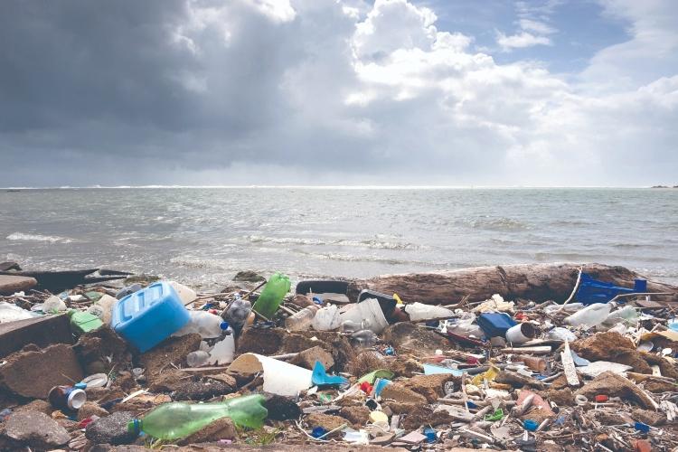 image for Convocan a gran limpieza global por 50 años del Día de la Tierra