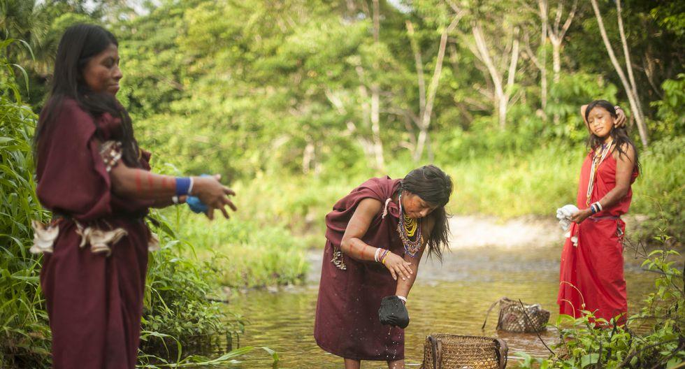 image for Crean grupo de trabajo para protección de comunidades indígenas / Coronavirus
