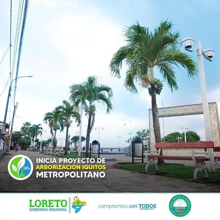 image for Lanzamiento del proyecto arborización Iquitos metropolitano