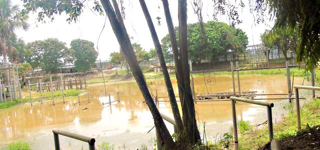 image for Laguna Sapi-Sapi-Nauta convertida en una verdadera estafa
