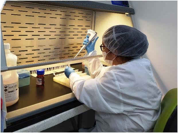 image for Laboratorio amplió el servicio de detección del Fusarium