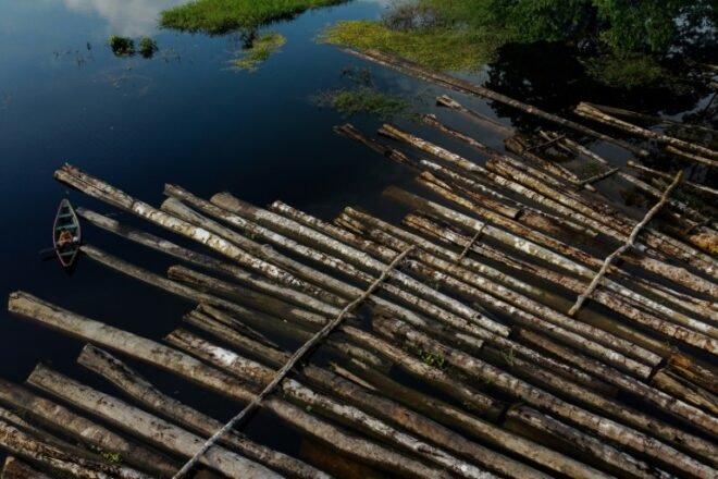image for Amazonia bajo presión