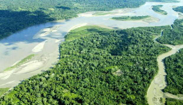 image for Cinco prioridades para salvar la Amazonía