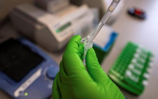 image for Israel crea vacuna contra el coronavirus