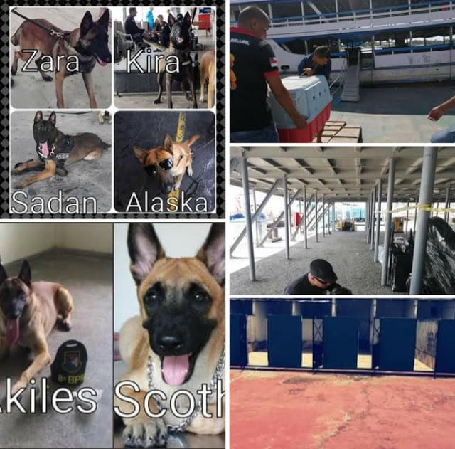 image for Unidade Canina anuncia fim de suas atividades