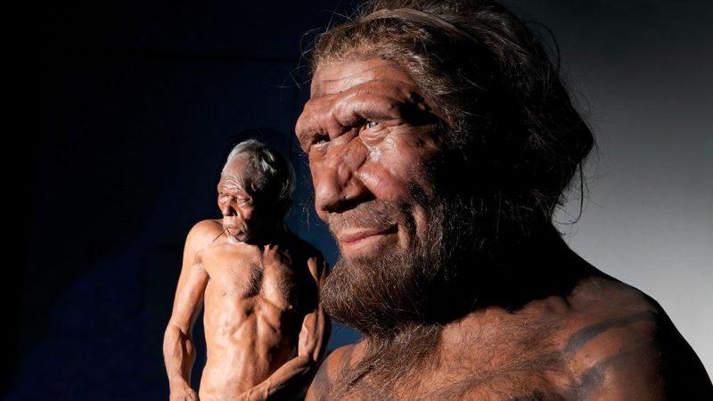 Denisovanos y neandertales en una recreacion en computador