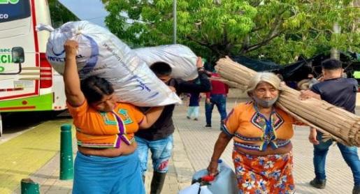 image for Centenares de familias desplazadas regresan a sus territorios