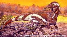 image for Novo dinossauro brasileiro é nomeado em homenagem ao Museu Nacional