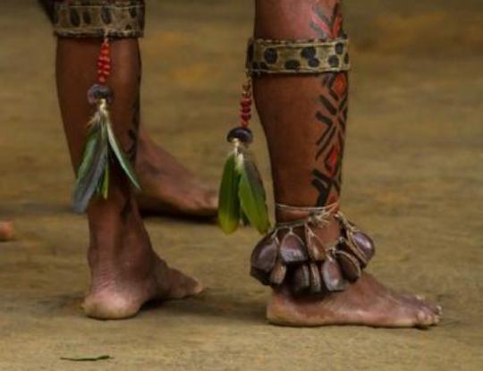 image for Indígenas morrem por Coronavírus