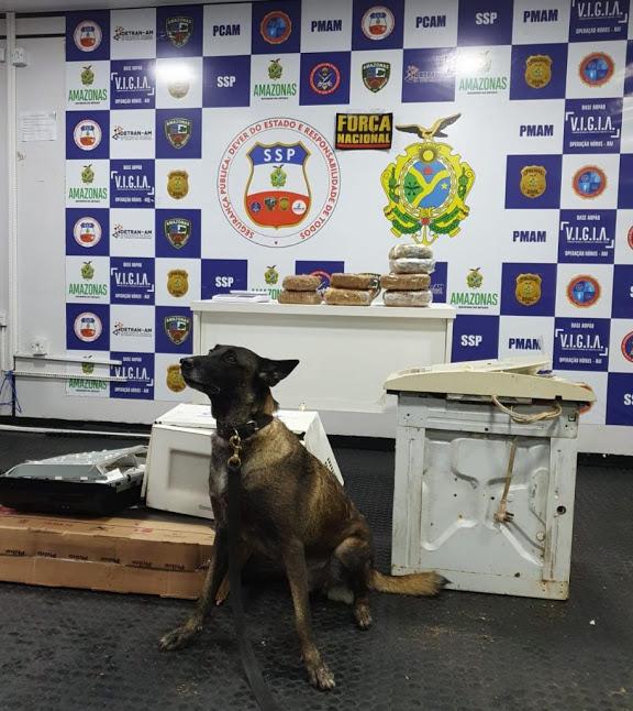 image for Apreendem mais de 7 quilos de drogas escondidas em embarcação
