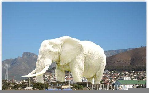 image for  Aumenta cantidad y valor de elefantes blancos en obras inconclusas