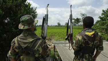 image for Grupo de 40 guerrilheiro da Colômbia entrou em território brasileiro e atacou de surpresa
