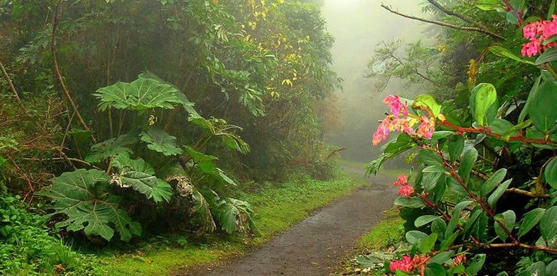 Zonas verde de Costa Rica