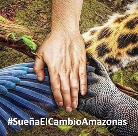 image for Zona Sur de la Amazonía en Estado Critico (Recomendaciones y Sugerencias)