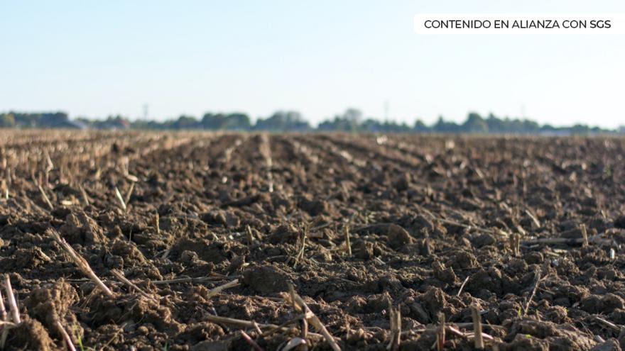 image for Control de calidad en suelos y pavimentos