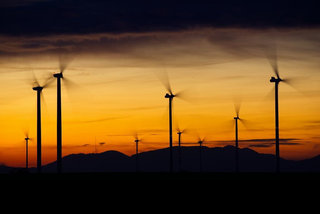 image for Nuevo récord de instalaciones de energía eólica en el mundo