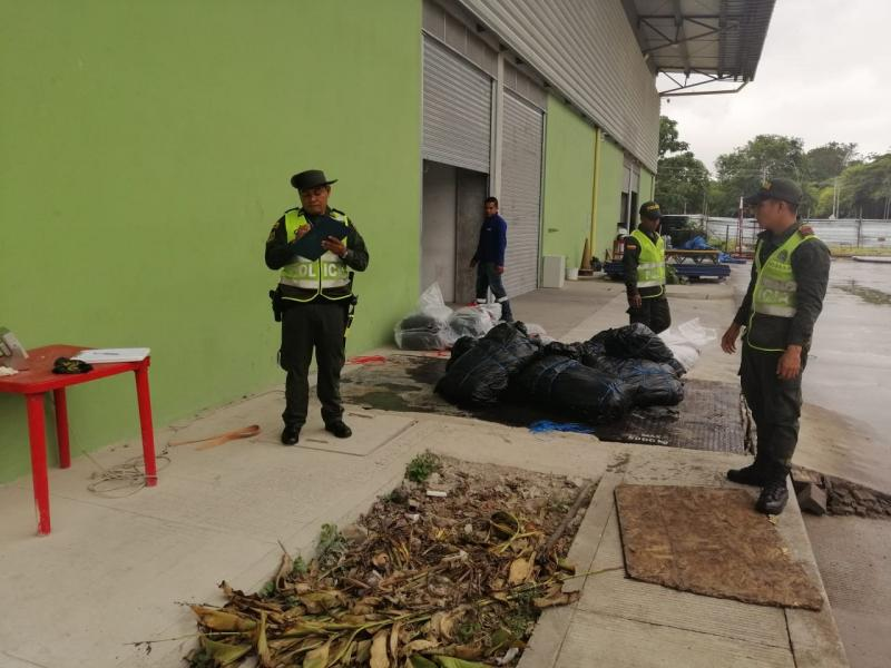 Se incauta cargamento de pescado mota en el Aeropuerto Internacional Alfredo Vásquez Cobo