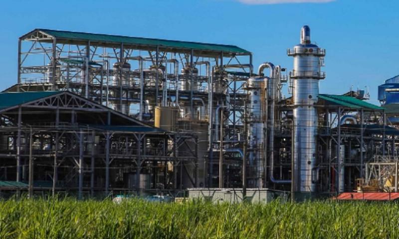 Por pérdida de recursos de Bioenergy y Ecopetrol