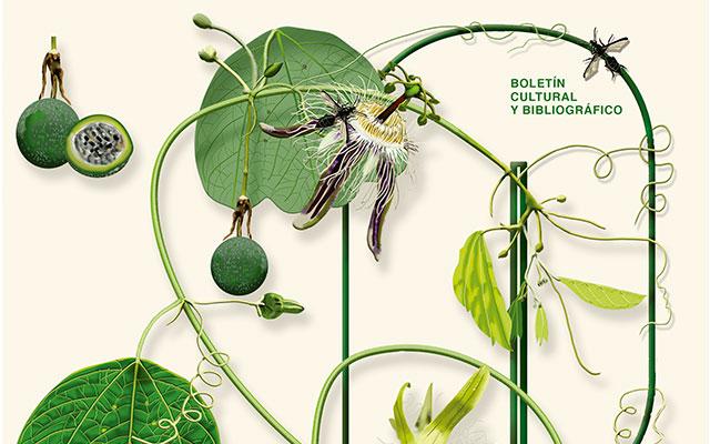 Los herbarios: un patrimonio natural