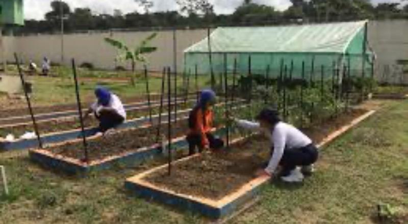 Penitenciária Feminina de Manaus (PFM) participaram do Curso de Jardinagem