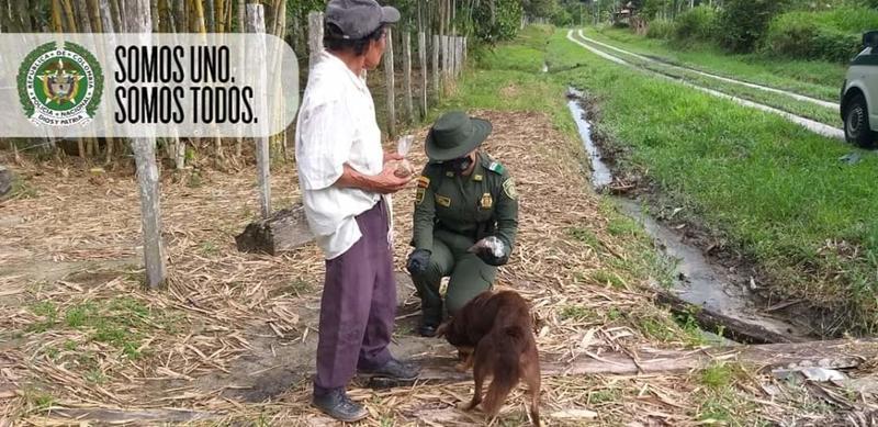 EL GRUPO DE PROTECCIÓN AMBIENTAL Y ECOLÓGICA PATRULLA LAS CALLES DE LETICIA EN BENEFICIO DE LOS ANIMALES DURANTE COVID19