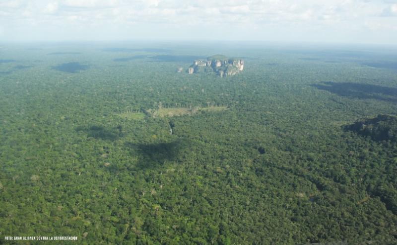 Imagenes de selvas colombianas