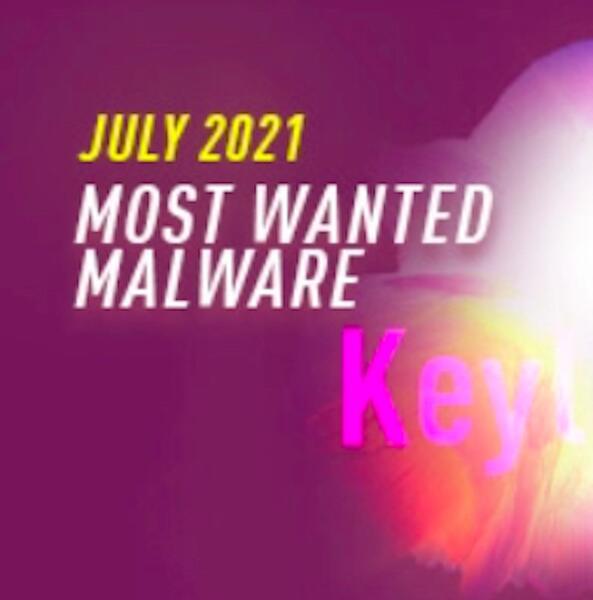 El malware ladrón de credenciales Snake Keylogger entra al Top 10 del global malware por primera vez