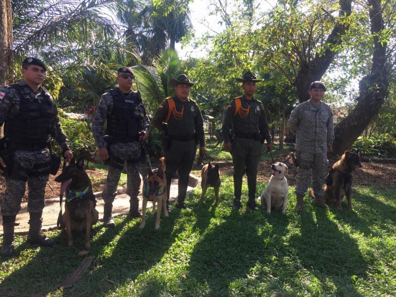 Canino de la FAC participa en festival internacional en el Amazonas