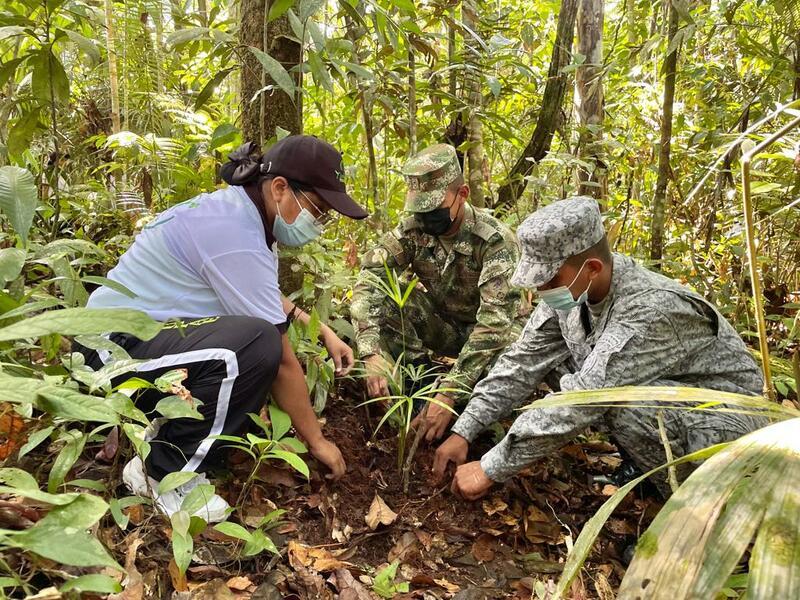 Jornada de reforestación mitiga el deterioro ambiental en el Amazonas