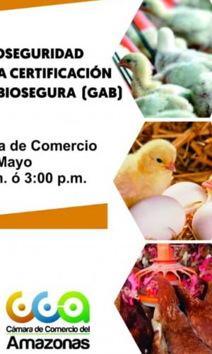 image for Taller de Bioseguridad