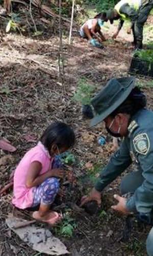 POLICÍA AMBIENTAL Y ECOLÓGICA REALIZA SIEMBRA DE ÁRBOLES EN COMUNIDAD INDÍGENA DEL KILÓMETRO 6