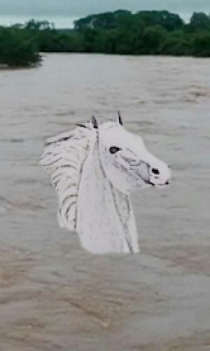 Lendas - O Cavalo Branco Gigante