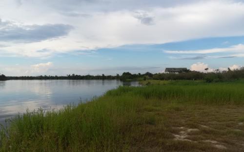Orilla del rio Amazonas en Iquitos