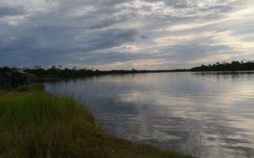 Paisajes a orillas del rio Amazonas