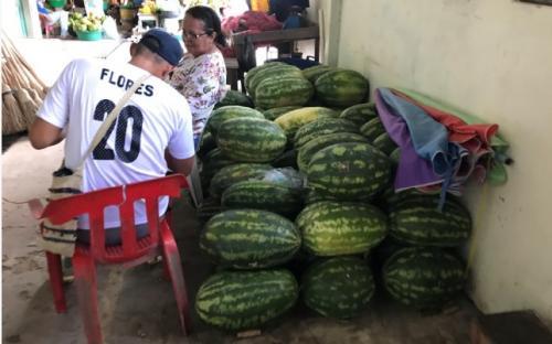 Melancia em Mercado Municipal Tabatinga