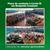 SSP/BC libera veículos apreendidos após descumprimento de Decreto em combate a Covid-19