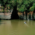 La Amazonía colombiana en 'El sendero de la anaconda', este sábado por Sala Trece