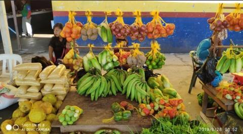 Produtos da Amazonas