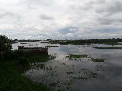 A orilla del rio Amazonas