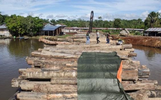 image for Operativo en la localidad de Mazán por Material Ambiental