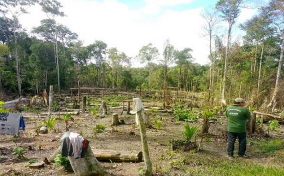 Areas de poca vegetacion