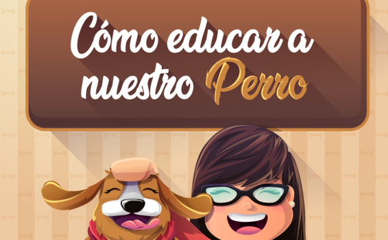 image for Cómo educar a un perro paso a paso