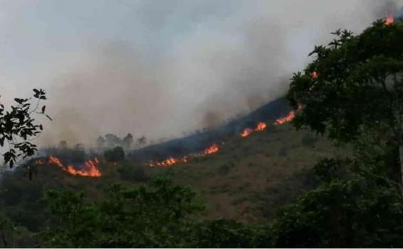 image for Incendios forestales en varios municipios de Cundinamarca