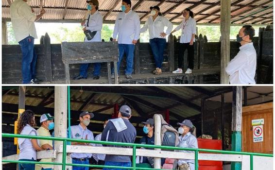 image for Colombia trabaja para lograr la reapertura del mercado peruano
