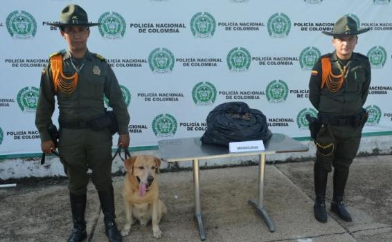 Dos policias al lado de una carga de marihuna en un mesa